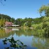 Waldhotel Zur Holzmühle, Restaurant & Beach Lounge
