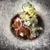 Gebeiztes Rinderfilet mit geräuchertem Frischkäse und Rotweinschalotte