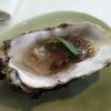 Amuse 2: Auster mit Essig-Vinaigrette