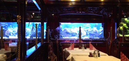 Bild von China Restaurant Tang