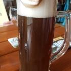 Foto zu Schaab-Louis: Cola Bier
