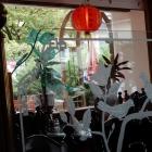 Foto zu Shanghai: Impression der Inneneinrichtung