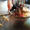 Der Teppanyaki-Meister am Werk
