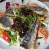 Salat mit gebratenem Seehechtfilet