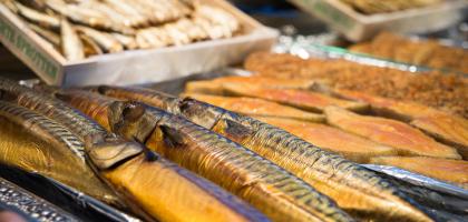 Fotoalbum: Fisch