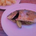Foto zu Gocht's Fischhaus: