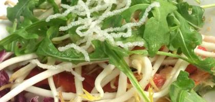 Fotoalbum: Suppen und Salate