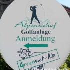 Foto zu GreenVieh - Alp: