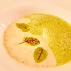 Foto zu Restaurant Weinhaus Uhle: Frühlingsspinat, Kartoffel-Espuma, verlorenes  Ei