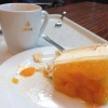 Umgefallene Mandarinen-Quarktorte