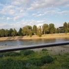 Foto zu Culinaria: Blick von der Terrasse: Elbe bei Niedrigwasser