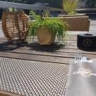 Foto zu Restaurant-Bar Bestial: Auf der Terrasse
