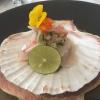 Sashimi von Jakobsmuschel, japanischer Lauch, Yuzu-Miso-Sud