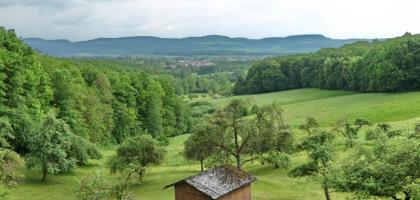 Bild von Waldcafe Wannenhof