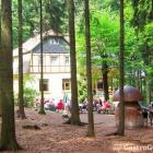 Foto zu Waldschlößchen: