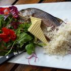Foto zu Weingasthaus in Breuers Rüdesheimer Schloss: 7.7.17: Frische geräucherte und saftige Forelle mit Salatbeilage und frisch geriebenen Meerrettich. Perfekte Vorspeise für 2 Personen