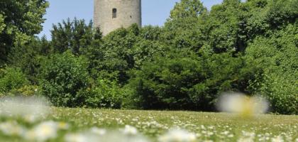 Fotoalbum: Sparrenburg