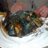 Frische Miesmuscheln in Tomaten- oder Weißweinsauce