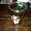 Lachstartar auf Belugalinsen und Pommery-Senf-Crème