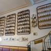 fast 250 Kaffeemühlen an einer Wand