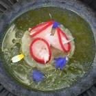 Foto zu Gut Lärchenhof · Gourmetrestaurant: Zander und Tomatenessenz