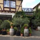 Foto zu Hofgarten Dernau: 17.9.17