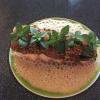 Langoustine, LUMA-Bauch, Spinat und Wasabi