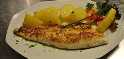 Fotoalbum: Restaurant Dalmacija