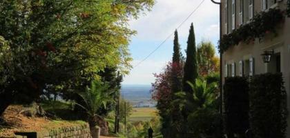 Fotoalbum: Weinernte 2013 auf dem St. Annagut