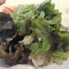Beilagensalat mit OId-School-Essig-Öl-Dressing
