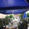 Bild von Restaurant Eule