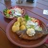 Forelle mit Petersilienkartoffeln, Salat und kleinem Beilagensalat