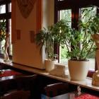 Foto zu Restaurant Syrtaki: