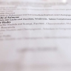 Tagliatelle al Salmone (Bandnudeln mit Lachs und Zucchini, Weißwein, Sahne-Tomatensauce, 11,90 €)