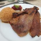 Foto zu Restaurant Vogelkoje: Kojenente