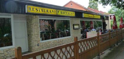 Bild von Restaurant Bacchus