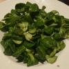 Feldsalat ohne Extras