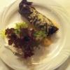 Zaziki und gefülltes Weinblatt mit Gorgonzolasauce
