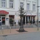 Foto zu Kajüte 07: