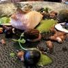 Kabeljau / Spinat / Gerste / Champignon