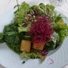 Foto zu Hotelweingut Barth: Beilagensalat