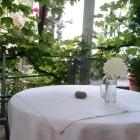 Foto zu Hotelweingut Barth: Terrassenplatz