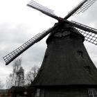 Foto zu Mühlencafé: