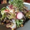Frühlingssalat als Vorspeise