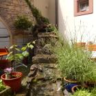 Foto zu Zum Schwan: im Innenhof