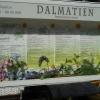 Bild von Dalmatien