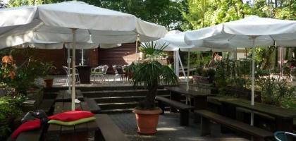 Bild von Biergarten mit Ginkgobaum