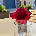 Foto zu Elements · Restaurant: Sommer auf der Terrasse