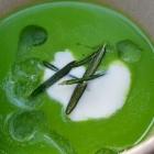 Foto zu Elements · Restaurant: Kopfsalat-Erbsen-Velouté, Rosmarincreme