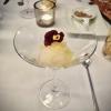 Gin-Tonic-Sorbet | Kumquat-Zitronengras-Kaviar